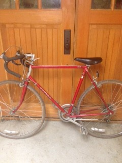 my first road bike, a mid-1980s Shogun 100